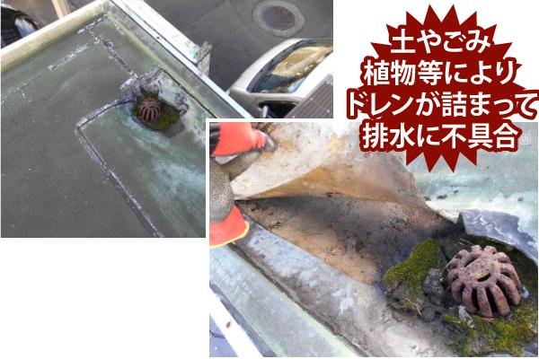 土やごみ植物等によりドレンが詰まって排水に不具合