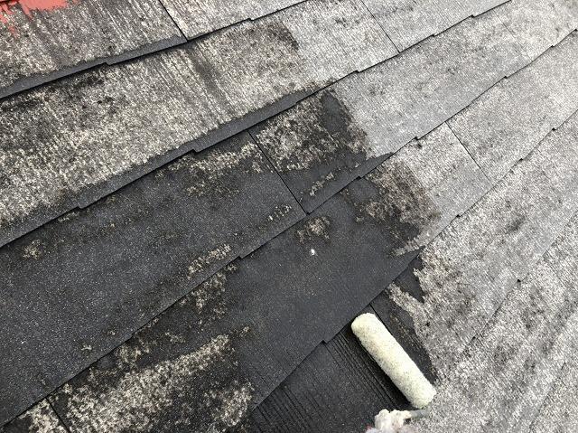 屋根 下塗り塗装 (1)