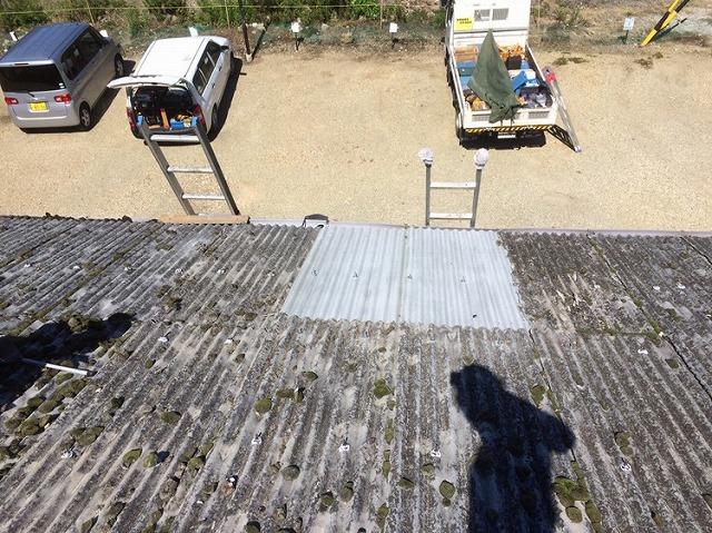 長浜市 工場屋根写真①