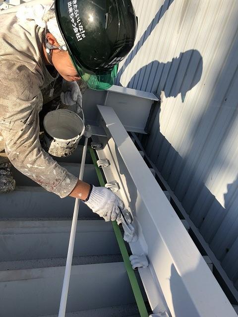 彦根市折板屋根上塗り④