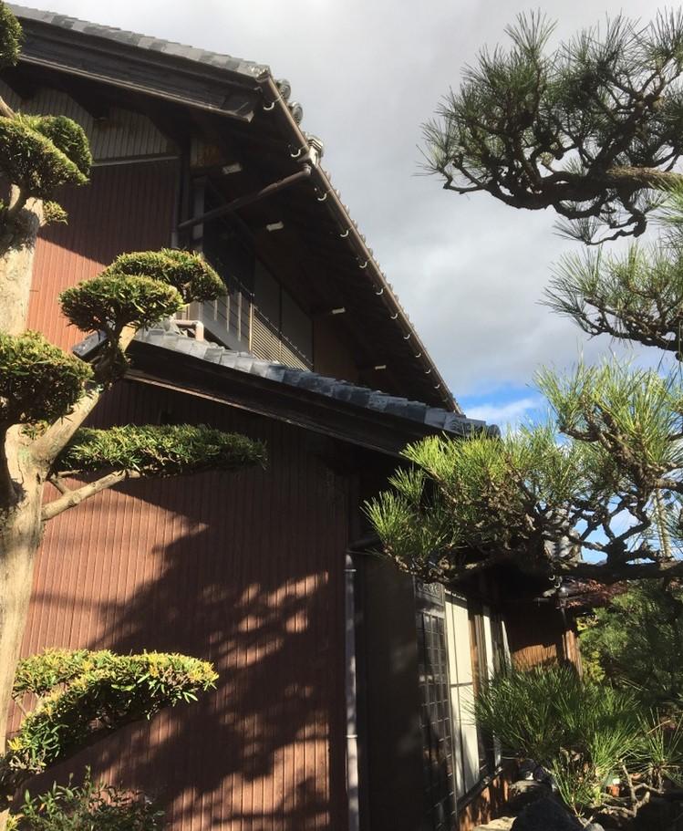 長浜市 板金屋根、雨樋現地調査①